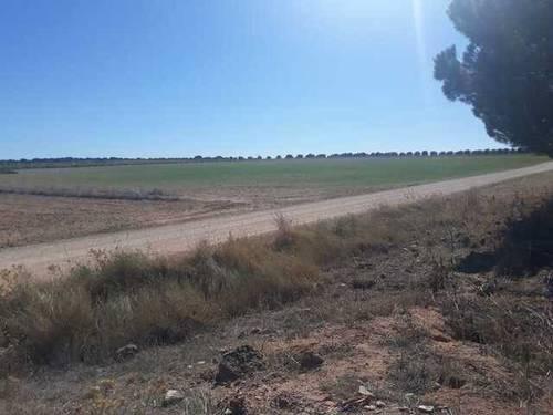 imagen 1 de Venta de terreno en Las Pedroñeras (Cuenca)
