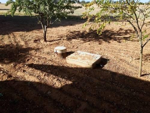 imagen 1 de Venta de finca de frutales en Tarancón (Cuenca)