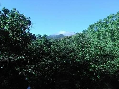 imagen 1 de Venta de finca en Anglés (Gerona)
