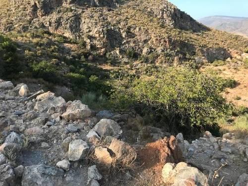 imagen 2 de Venta de magnífico terreno en Gualchos (Granada)