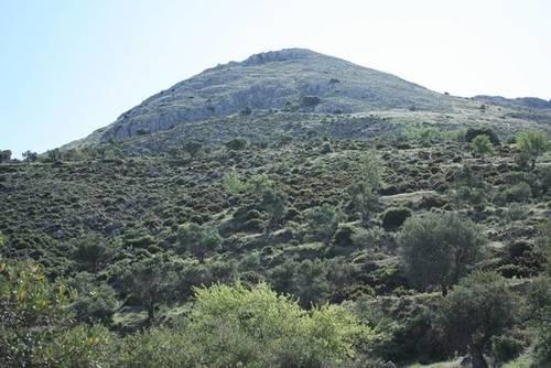 imagen 3 de Venta de finca en Cogollos de la Vega (Granada)