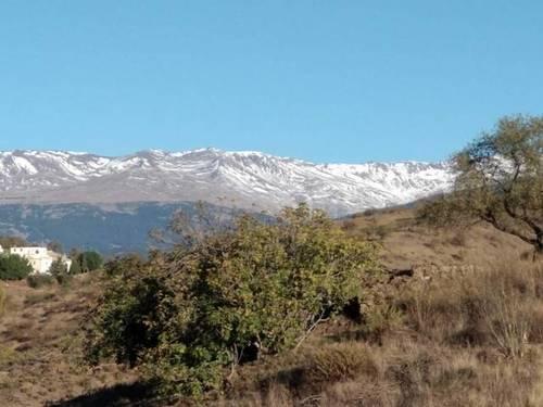 imagen 1 de Venta de finca en Torvizcón (Granada)