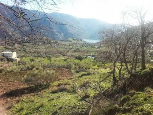 imagen 1 de Venta de estupenda finca en Güejar Sierra (Granada)