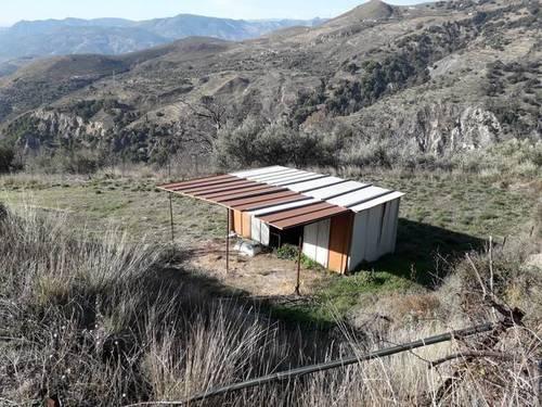 imagen 2 de Venta de finca en Cáñar. La Alpujarra (Granada)