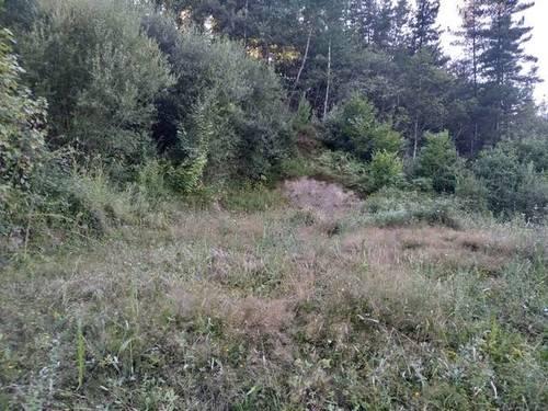 imagen 2 de Venta de terreno en Eskoriatza/Escoriaza (Guipúzcoa)
