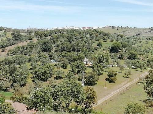 imagen 1 de Venta de terreno con abundante agua en Cumbres Mayores (Huelva)