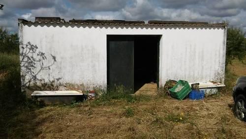 imagen 1 de Venta de terreno en Cartaya (Huelva)