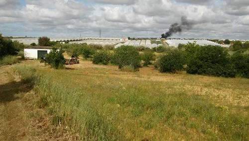 imagen 2 de Venta de terreno en Cartaya (Huelva)