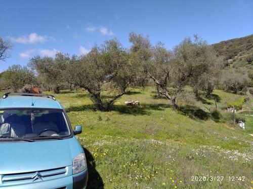 imagen 1 de Venta de estupenda finca en Aracena (Huelva)