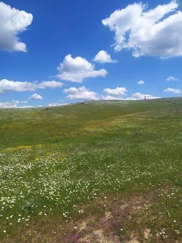 imagen 1 de Venta de gran terreno en Valverde del Camino (Huelva)