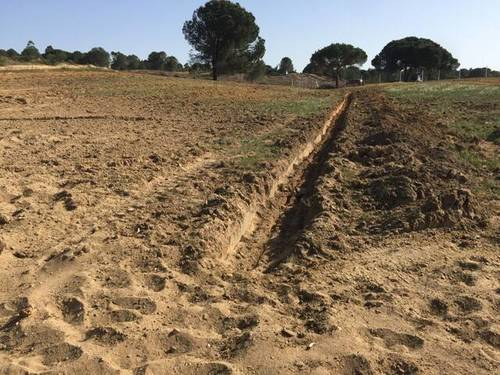 imagen 1 de Venta de fincas en Beas (Huelva)