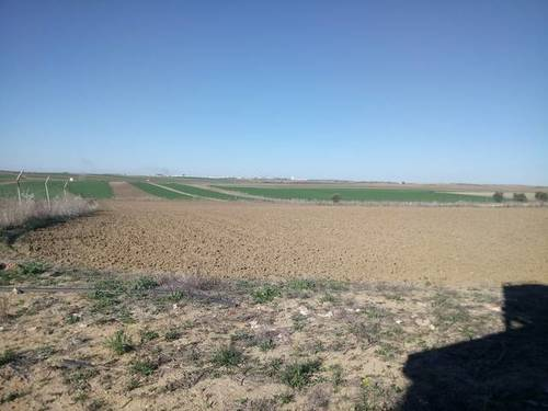 imagen 1 de Venta de terreno en Trigueros (Huelva)