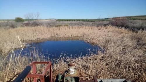 imagen 3 de Venta de terreno en Trigueros (Huelva)