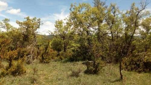 imagen 1 de Venta de preciosa finca en Sabiñánigo (Huesca)