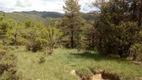 imagen 2 de Venta de preciosa finca en Sabiñánigo (Huesca)