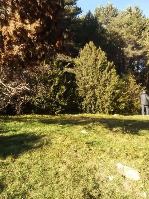 imagen 2 de Venta de fincas en Benasque (Huesca)