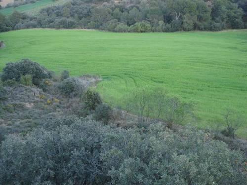imagen 2 de Venta de finca en Barbastro (Huesca)