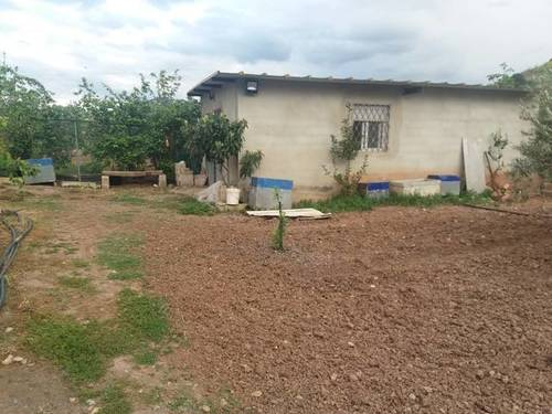 imagen 1 de Venta de huerta y olivar en Alcaudete (Jaén)