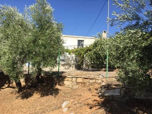 imagen 3 de Venta de finca olivar y cortijo en Jamilena (Jaén)