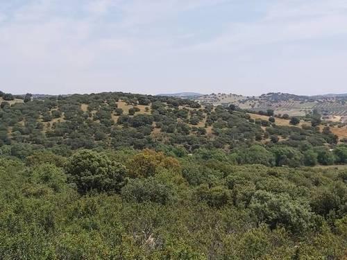 imagen 1 de Venta de terreno rústico en Aldeaquemada (Jaén)