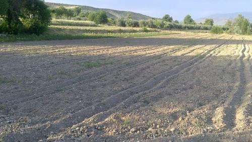 imagen 2 de Venta de terreno en Agrupación de Mogón (Jaén)