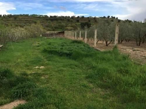 imagen 1 de Venta de finca en Arnedo (La Rioja)