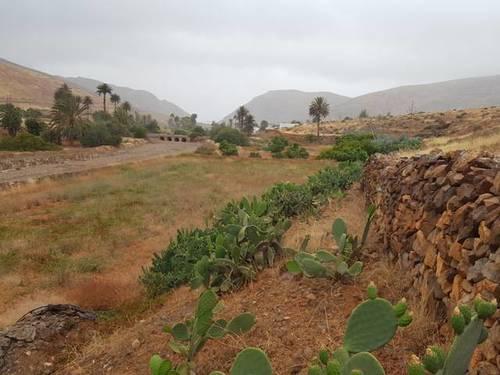 imagen 2 de Venta de finca en Vega de Río Palmas (Las Palmas)