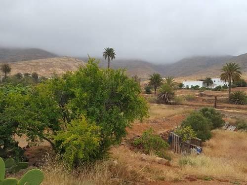 imagen 3 de Venta de finca en Vega de Río Palmas (Las Palmas)