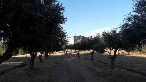imagen 1 de Venta de finca en Bassella (Lérida)
