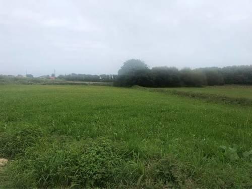 imagen 2 de Venta de prado en Barreiros (Lugo)