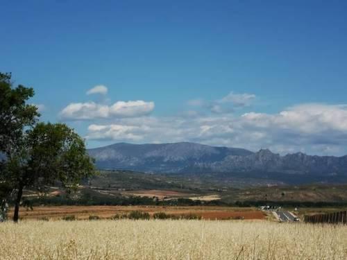 imagen 2 de Venta de estupenda finca en Talamanca de Jarama (Madrid)