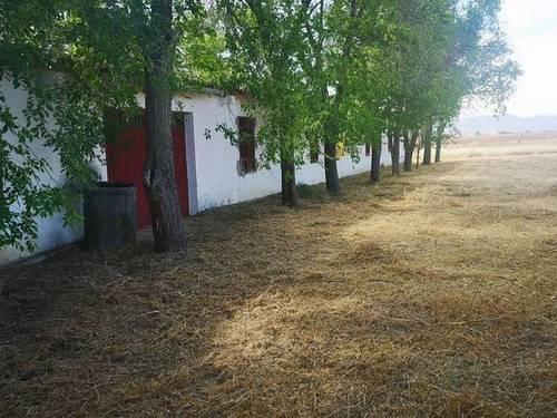 imagen 1 de Venta de estupenda finca en Talamanca de Jarama (Madrid)