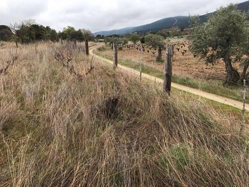 imagen 1 de Venta de bonita finca en San Martín de Valdeiglesias (Madrid)