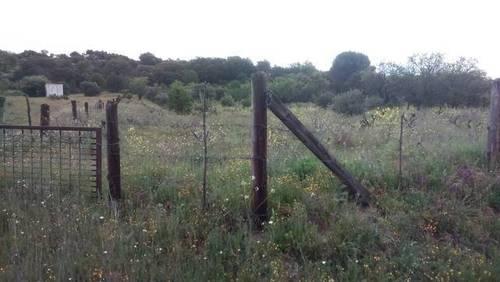 imagen 3 de Venta de bonita finca en San Martín de Valdeiglesias (Madrid)