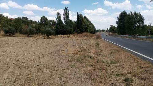 imagen 2 de Venta de campo olivar en Carabaña (Madrid)