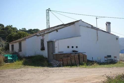 imagen 3 de Venta de finca en Junta de los Caminos (Málaga)