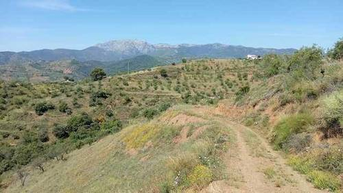 imagen 1 de Venta de terreno en Sierra de las Nieves (Málaga)