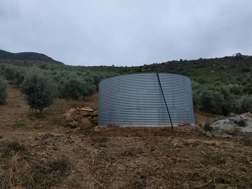 imagen 2 de Venta de campo olivar en Casabermeja (Málaga)