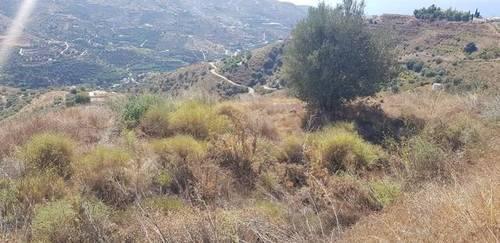 imagen 2 de Venta de finca en Torrox (Málaga)