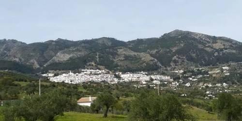 imagen 2 de Venta de estupenda finca en Casarabonela (Málaga)