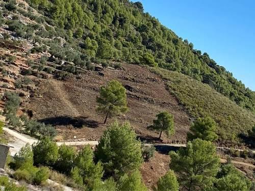 imagen 2 de Venta de terreno en Yunquera (Málaga)