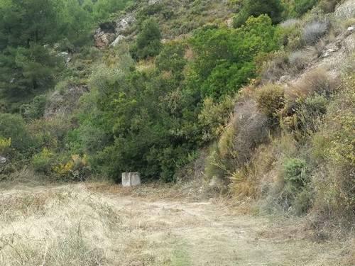 imagen 3 de Venta de finca en Nerja (Málaga)
