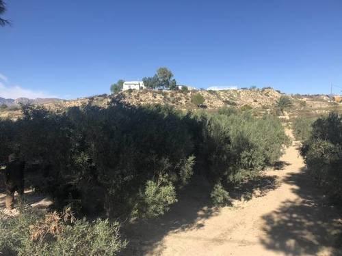 imagen 1 de Venta de terreno en Fortuna (Murcia)