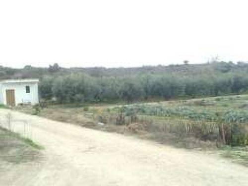 imagen 2 de Venta de tierra de Labor