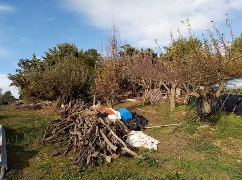 imagen 3 de Venta de finca con pabellón en Leza