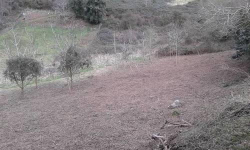 imagen 2 de Venta de finca rústica en Ereño con caserío