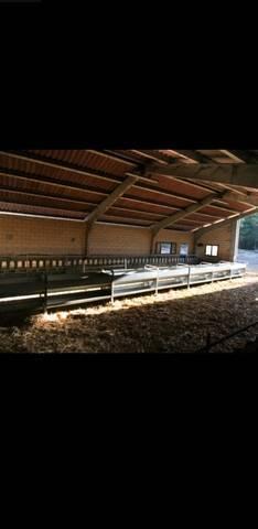 imagen 2 de Se vende instalación ganadera en Orduña