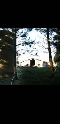 imagen 3 de Se vende instalación ganadera en Orduña
