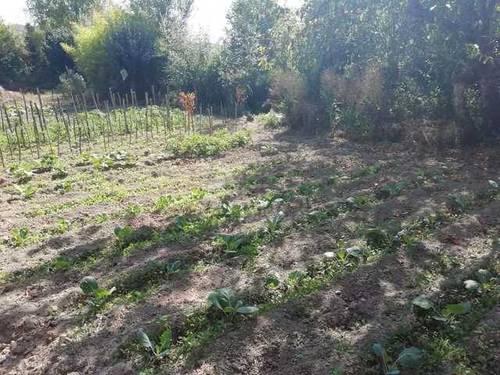 imagen 2 de Venta de terreno rústico con arroyo en Pobes