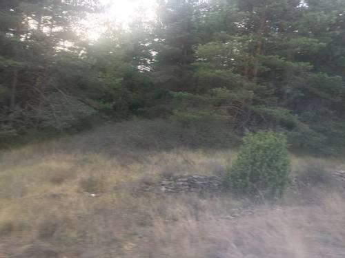 imagen 2 de Venta de terreno rústico en Cuartango